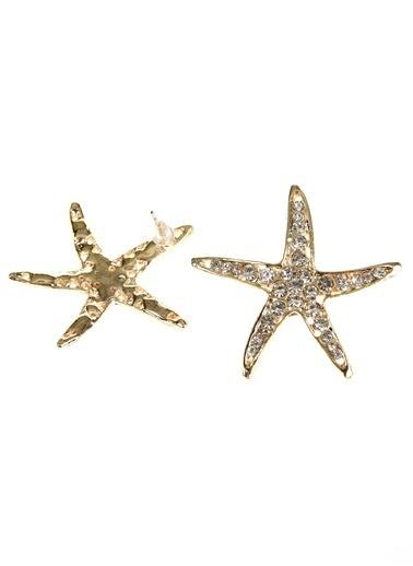 Loves You Taşlı Yıldız Küpe Altın